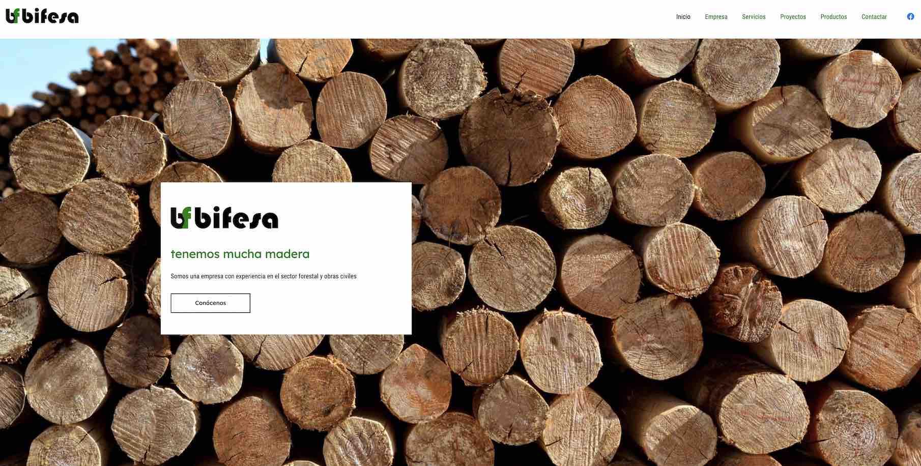 Bifesa.com – Actulización y rediseño web